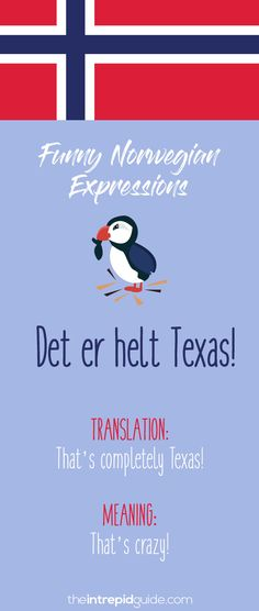 Norwegian Sayings and Idioms - Det er helt Texas! Norwegian Words, Norwegian House, Norway Language, Norway Travel, Good Communication, Love Languages, Learning Tools, Idioms, Hilarious