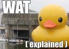 WAT Duck