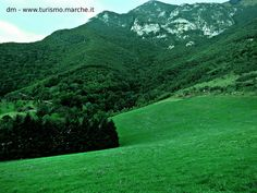 The Mount Catria at 1702 mt - Marche, Italy