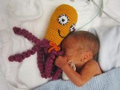 Octopus for a preemie! Free pattern for these cuddly guys that actually help preemie babies feel safer and do better (as shown by actual research). Preemie Crochet, Crochet Bebe, Knit Or Crochet, Crochet For Kids, Crochet Crafts, Crochet Toys, Crochet Projects, Preemie Babies, Premature Baby