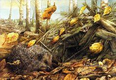 Oil Paintings of 4 Marjolein Bastin nature autumn hedgehog animals ...