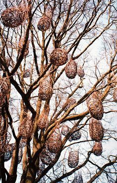 In 1992 the project of the Tree of 100 nests, a giant oak tree, isolated in the open countryside of Lodi, is loaded by the artist of a hundred intertwined plant artefacts, Land Art, Natural Forms, Natural Materials, Garden Art, Garden Design, Twig Art, Willow Weaving, Cool Tree Houses, In Natura