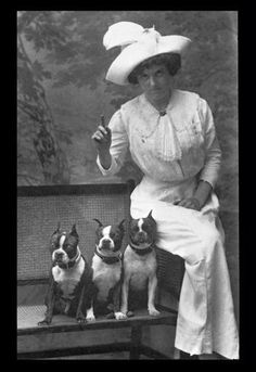 Mrs. Rhoades and Her Three Boston Terriers 12x18 Giclee on canvas