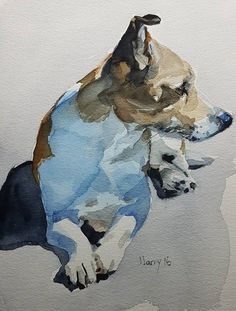 Jack Russell Dog Portraits Dog Painting Dogs Pet Portraits #watercolorarts