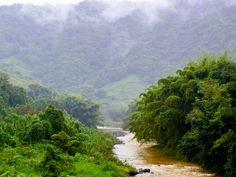 Río en Morovis