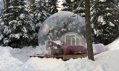 $199 for Unique Bubble Tent Accommodation at Cavaland Park ($299 Value)