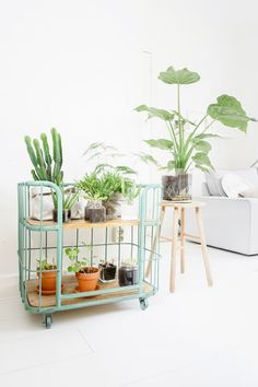 Plant Cart Idea For Home