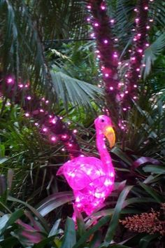 Garden of Lights at Flamingo Gardens