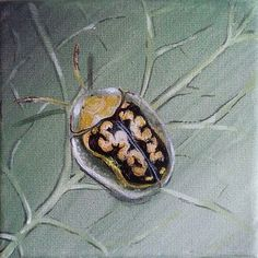 Cassida insect on the leaf Throw Pillow for Sale by Judit Szalanczi Original Artwork, Original Paintings, Acrylic Paintings, Canvas Art, Canvas Prints, Painted Leaves, Realism Art, Buy Art, Fine Art America