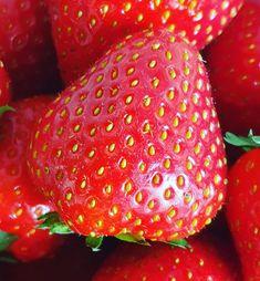 Burn Out, Coaching, Strawberry, Fruit, Instagram, Food, Seeds, Training, Essen