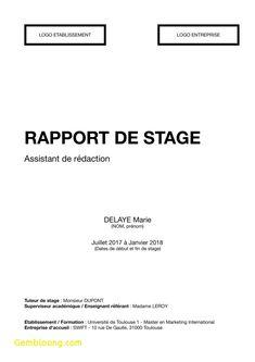 12+ conclusion rapport de stage | gouvernoratmaniema en ...