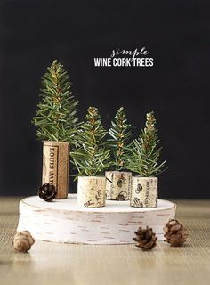 Up your holiday decor game by filling vases with mini forest scenes using tree or garland clippings, wine corks, and faux snow.  Get the tutorial at Live Laugh Rowe.