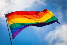 Image result for THE RAINBOW flag