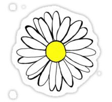 daisy drawing Sticker