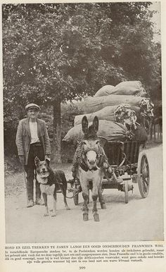 Frankrijk ezelwagen 1920. Courtesy: janwillemsen (Netherlands).