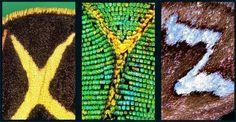 El alfabeto de las mariposas El fotógrafo noruego Kjell Bloch Sandved ha recopilado durante muchos años instantáneas de mariposas y polilla...