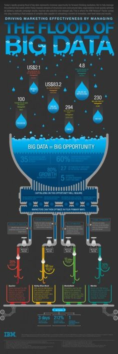Managing the Flood of Big Data in Digital Marketing