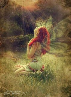 Elves Faeries Gnomes:  #Faery.                              …