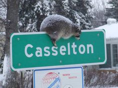Casselton, ND ... I fondly remember a parish priest that was in Casselton years ago.