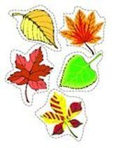 Fall theme - 5 leaves - sorting,matching and counting