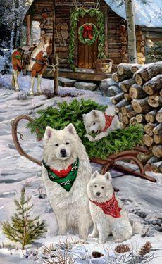 Samoyed - Christmas Camp - by Margaret Sweeney