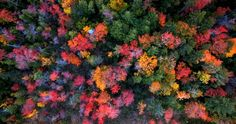New England is known for its spectacular display of colors during the foliage season. Each fall, billions of leaves change from green into a kaleidoscope of colors. With the help of a drone, I was able to film this breathtaking phenomenon. I flew for hundreds of miles and accumulated over 24 hours of flight time this fall. Whether it was flying through clouds at sunrise or soaring above treetops at sunset, I loved every minute of it. I look forward to flying around New England again next…