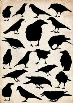 Crow Art, Raven Art, Bird Art, Vogel Silhouette, Crow Silhouette, Black Silhouette, The Crow, Clipart, Crows Drawing