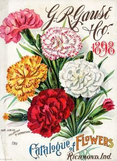 Beautiful art print Vintage Seed Pack Image Wall Decor Unframed Print is Unframed x Ready for framing . Professionally printed on medium weight cardstock Vintage Diy, Vintage Labels, Vintage Ephemera, Vintage Postcards, Decoupage Vintage, Seed Art, Vintage Seed Packets, Seed Catalogs, Carnations