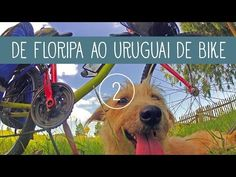 De bike com a cadela, de Floripa ao Uruguai • Trekking Brasil