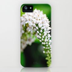 Spring has Bloomed iPhone & iPod Case by Captive Images Photography - $35.00