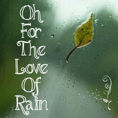 for the love of RAIN