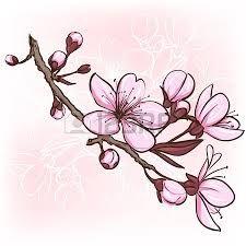kwitnąca wiśnia rysunek - Szukaj w Google