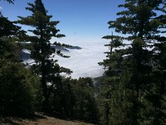 Angeles National Forest. My favorite place to hike in Los Angeles