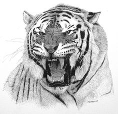 Black and White Pointillism | Go Tigers