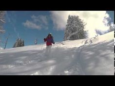 Siegitours - Google-Suche Ski Holidays, Salzburg, Alps, Skiing, Tours, Adventure, Fun, Outdoor, Friends
