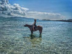 Horseback riding on Lindquist Beach, US Virgin Islands