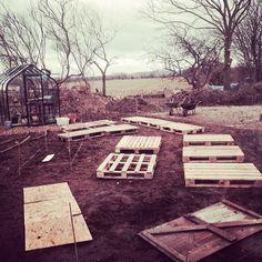 12 Tips for Creating a Vegetable Garden Picnic Blanket, Outdoor Blanket, Space Series, Gardening Tips, Vegetable Gardening, Great Hobbies, You Know Where, Scene Photo, Raised Beds