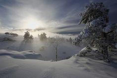 Фотография Зимняя... из альбома Времена года. автора Sergey Shulga. Фото загружено 7 января 2016.