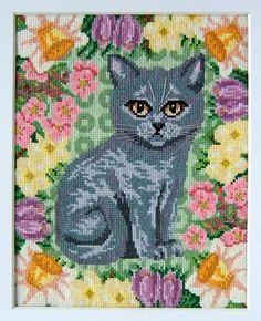 Spring_Kitten_-_Molly_sm.jpg