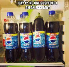 Día 12: Nadie sospecha que soy una berenjena.