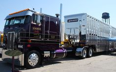 1987 Peterbilt Cabover. Beautiful old Pete pulling a cattle pot. Love it...