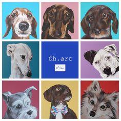 Nel pennello di Chiara Lanzani batte il cuore dei pet-ritratti:http://www.qualazampa.news/2015/10/01/nel-pennello-di-chiara-lanzani-batte-il-cuore-dei-pet-ritratti/