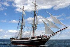 tall ship pelican - Поиск в Google