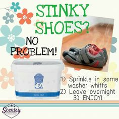 Scentsy odor eaters! www.shallscents.scentsy.us