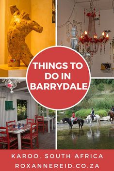 17 things to do in Barrydale on Route 62 in the Karoo - Roxanne Reid Stuff To Do, Things To Do, All About Africa, Hotel Arts, Vintage Diner, Wildlife Safari, Slow Travel, Beer Tasting, Nature Reserve