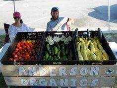 Bishopville Organic Produce