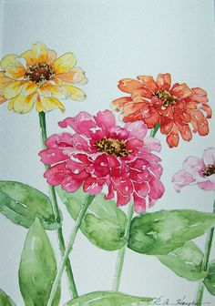 Zinnias In Watercolor ` Watercolor Zinnias zinnias in watercolor / watercolor zinnias ` watercolor zinnias tutorial ` zinnias in watercolor ` watercolor flowers zinnias Watercolor Pictures, Watercolor Cards, Watercolour Painting, Watercolor Flowers, Painting & Drawing, Watercolor Portraits, Watercolor Landscape, Watercolours, Abstract Paintings