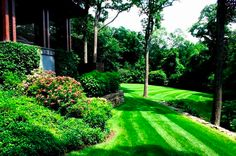 starting spring lawn care too early can harm your lawn