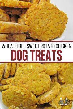 (wheat-free) sweet potato chicken Diy Dog Treats, Homemade Dog Treats, Dog Treat Recipes, Healthy Dog Treats, Yummy Treats, Dog Food Recipes, Chicken For Dogs, Chicken And Biscuits, Gluten Free Chicken