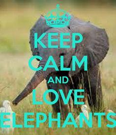 keep-calm-and-love-elephants-244.jpg 600×700 pixels